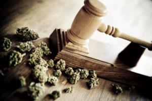 Toms River NJ Marijuana Distribution Lawyer