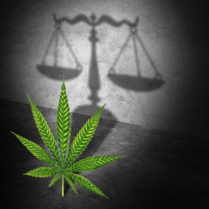 Is marijuana possession a felony Lacey NJ help